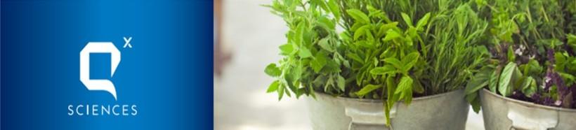 Dec Herbs